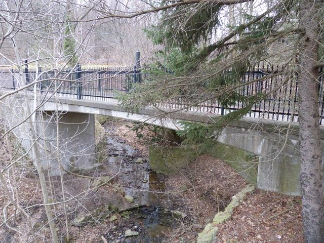 Webster's Falls Rigid-Frame Bridge