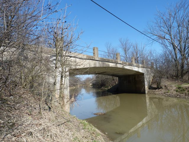 Roy Bridge